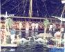 Jeux sans frontières 1994 à Poros (Grèce)